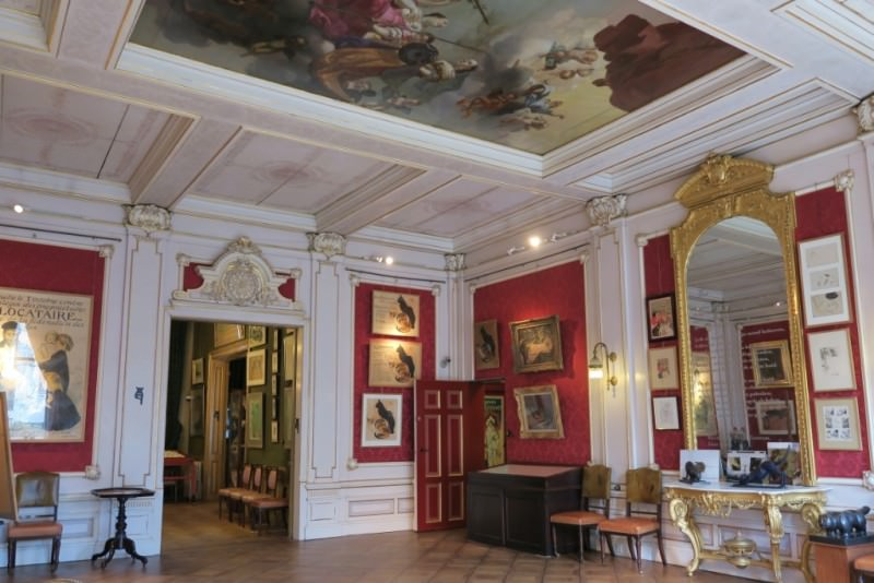 Unusual museums in Amsterdam Kattenkabinet